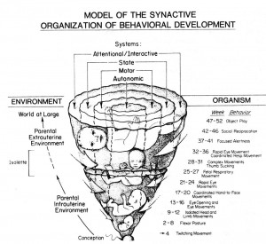 Synactive Theory