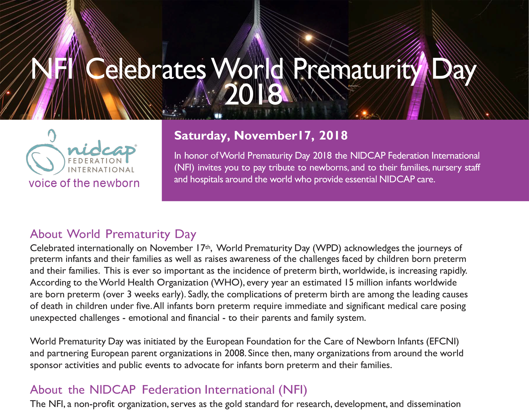World Prematurity Day 2018 NFI Info Sheet image