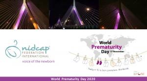 WPD-NFI-EFCNI-Poster-Template-2020 image full